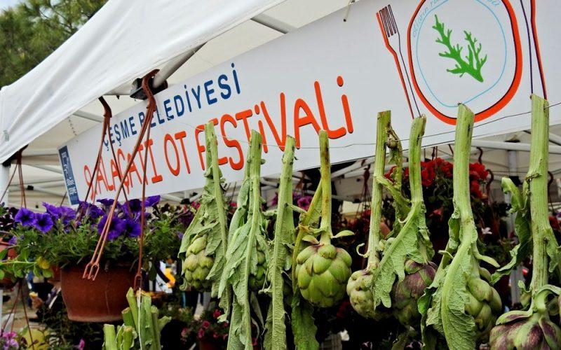 alacati-ot-festivali-2020-17